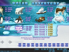 Polar Adventure pokieslots77.com World Match 2/5