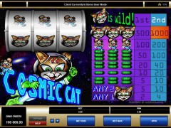 Cosmic Cat - Microgaming
