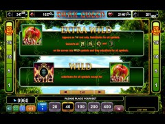 Dark Queen pokieslots77.com Euro Games Technology 3/5