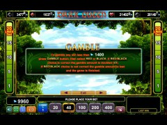 Dark Queen pokieslots77.com Euro Games Technology 4/5