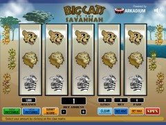 Big Cats Of The Savannah pokieslots77.com Arkadium 1/5