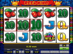 Reel King pokieslots77.com Novomatic 4/5