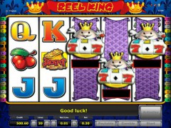 Reel King pokieslots77.com Novomatic 5/5